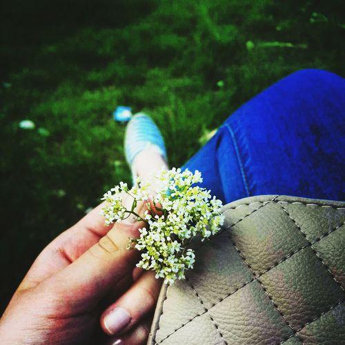 Summer Instagood, #tweegram #photooftheday #sketch,#sketchclub,#malen,#painting,#instagram,#picoftheday,#art,#star,#followme,#follo Flower