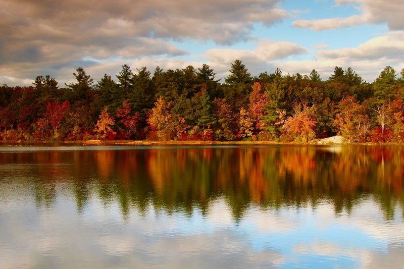 Fall Beauty Fall Colors Tree Water Plant Lake Reflection Sky Cloud - Sky