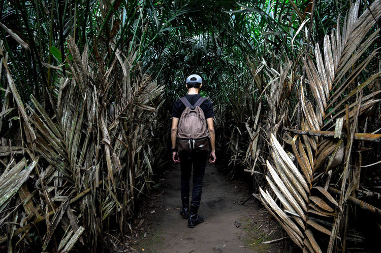 Maturity is learning to walk away from people and situations that threaten your peace of mind, self-respect, values, morals and self-worth. #solotravel #grouptravel #travelling #theprotraveler #jungle #forest #wood #walking #landscape #beautifuldestination #wanderlust #wanderer #adventure #exploremalang #explorelumajang #pesonaindonesia_id #beautifulindonesia Solotravel Grouptravel Theprotraveler Travelling Jungle Forest Wood Landscape Beautifuldestination Wanderlust Wanderer Adventure Exploremalang Explorelumajang Pesonaindonesia_id BeautifulIndonesia Walking Brave Looking At Camera Portrait Front View Adults Only One Person Day Outdoors People Nature The Traveler - 2018 EyeEm Awards The Still Life Photographer - 2018 EyeEm Awards Be Brave A New Beginning