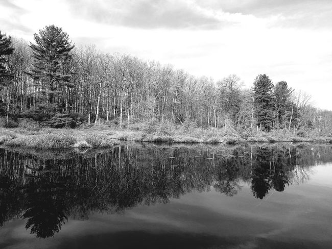 Black And White Blackandwhite Photography Blackandwhitephotography Black & White Reflection_collection Reflections In The Water Reflections Reflecting Serene Outdoors Serene Tranquil Outdoors