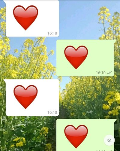 Two Is Better Than One Hearts WhatsApp Screenshot Whatsapp Emojis Emoji Heart Emoji