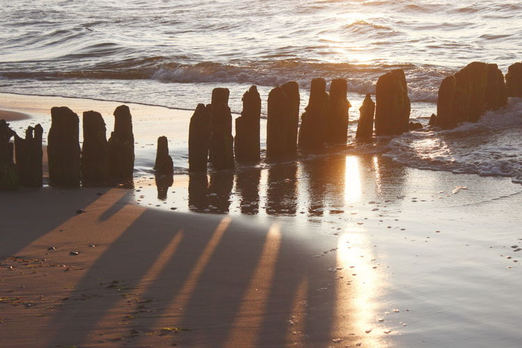 Wooden posts on beach
