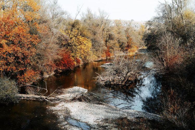 Late autumn.