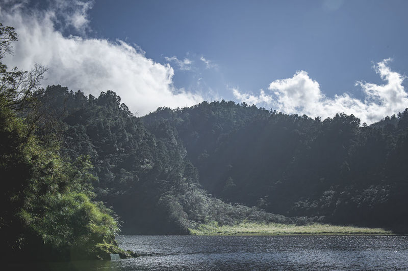 Panoramic view of river amidst trees against sky