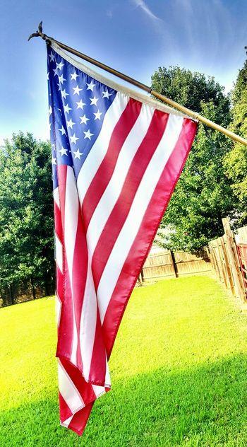 welcome to 'murica baby :D USA FLAG USA Flag American American Flag