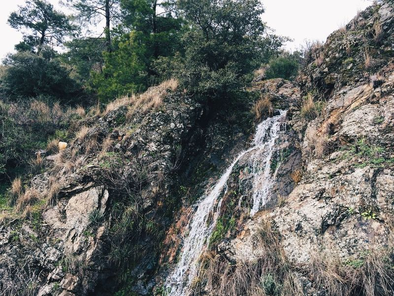 Beautiful Climate Change Earth Flora Forest Green Green Color Landscape Lush - Description Marmaris Mediation Nature Peace Rivulet Scenics Spring Tracking Tranquility Travel Destinations Turkey Turkish Nature Walking Around Waterfall Woods