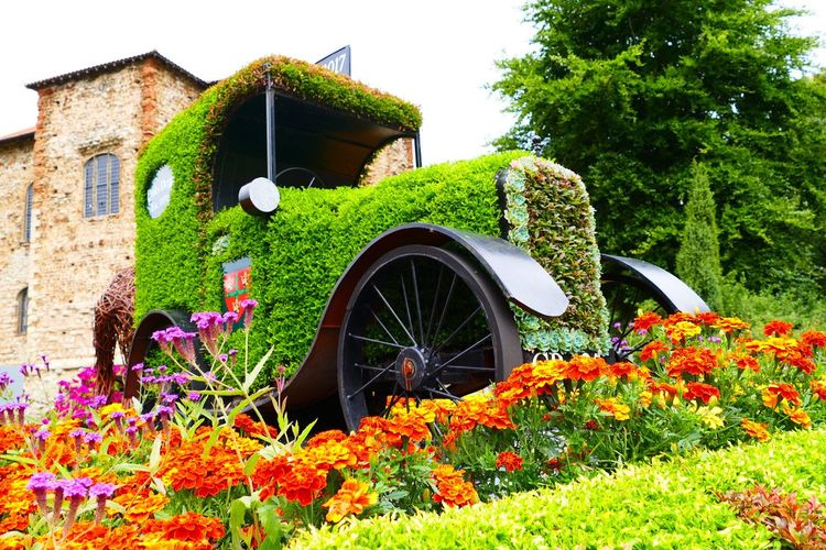 Flowers Colchester Colchester Castle Gardens Foliage Retro Car The Week On EyeEm Mix Yourself A Good Time