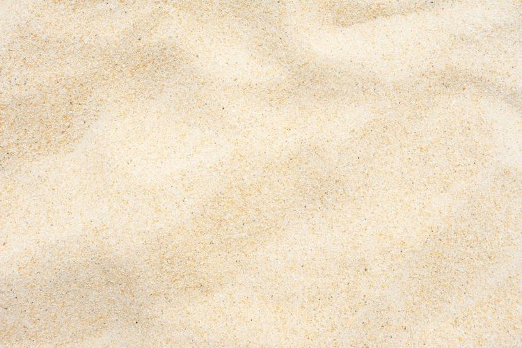 Beach sand texture Abstract Background Barren Beach Beige Brown Close Up Close-up Closeup Shot Color Image Copy Space Desert Directly Above Dry Full Frame Full Frame Shot Fun Heap Horizontal Japan Macro Nature No People Nobody Outdoor Pattern Photography Rippled Sand Sand Dune Sand Background Sand Texture Sea Silica Small Studio Shot Summer Sun Texture Textured  Thailand Yellow Backgrounds Paper Extreme Close-up Retro Styled Old Textured Effect Brown Paper Blank