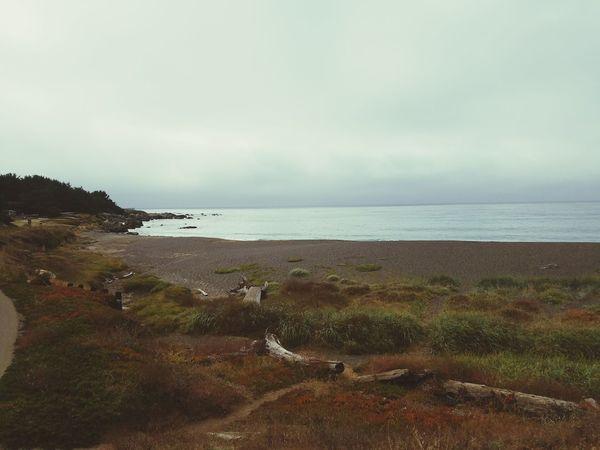 Gloomy... Sea Water Tranquil Scene Tranquility Beach Coastline Shore Ocean Solitude Norcal Nature