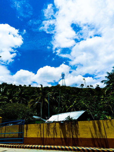 Tree Blue Sky Cloud - Sky Fence Tranquility Calm Tranquil Scene Idyllic Non-urban Scene Scenics