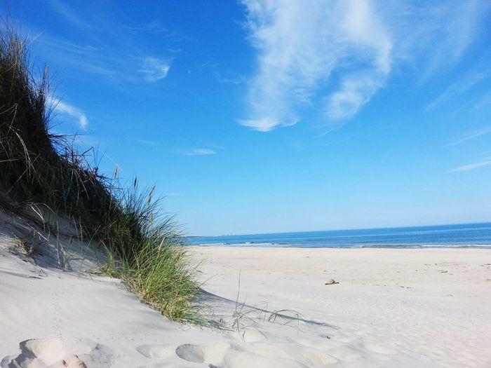 Beach @ Denmark