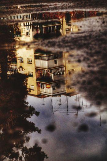 Gardeninthecity Raining Day Walking Around Perfection Puddle City