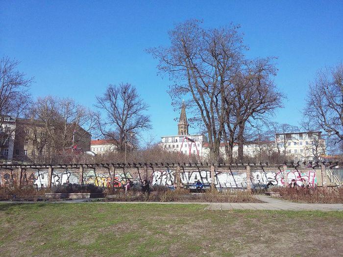 Berlin Winter Day. · Germany 030 Street Photography Graffiti Graffiti Wall Trees Urban Landscape Simplicity Blue Sky