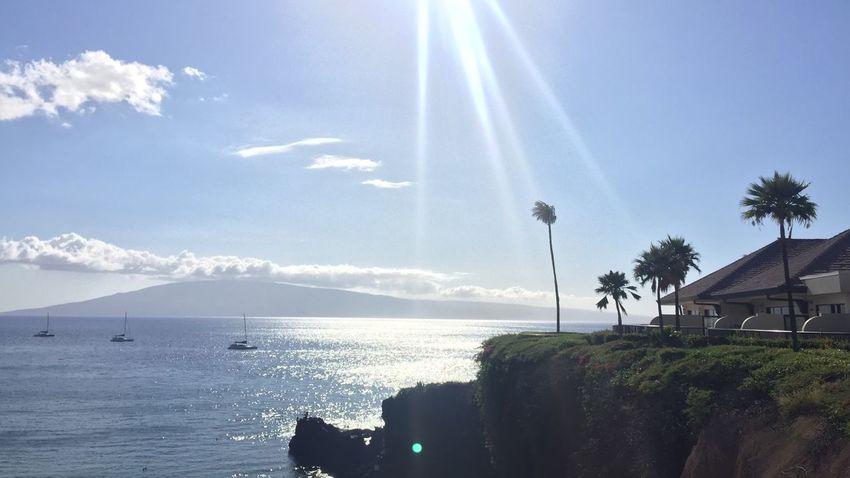 Hawaii Maui Maui Hawaii Mauiphotography Aloha Coast Coastline Nature Sea Palms View Resort Sheraton Sheraton Hotel Go Higher