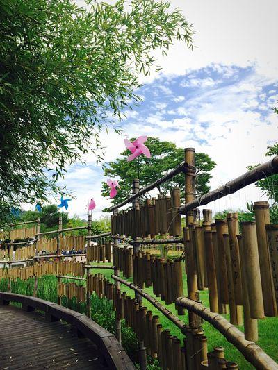 South Korea Damyang Dambo Pinwheel Sky Travel make a wish ★
