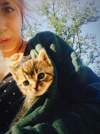 Me :)  Me And Cat Baby Cat♡ In Nature  Day Close-up Young Women Looking At Camera One Animal One Person Looking At Camera Sitting Happiness Sunlight Sky Animal Themes Domestic Animals Young Adult Tree Daylight Day Out Outdoors