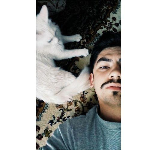 Yeni Arkadaşımız Ismi Barış cat vscocam selfie o bir van kedisi
