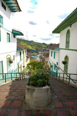 Paisaje Cultural Cafetero Jardines