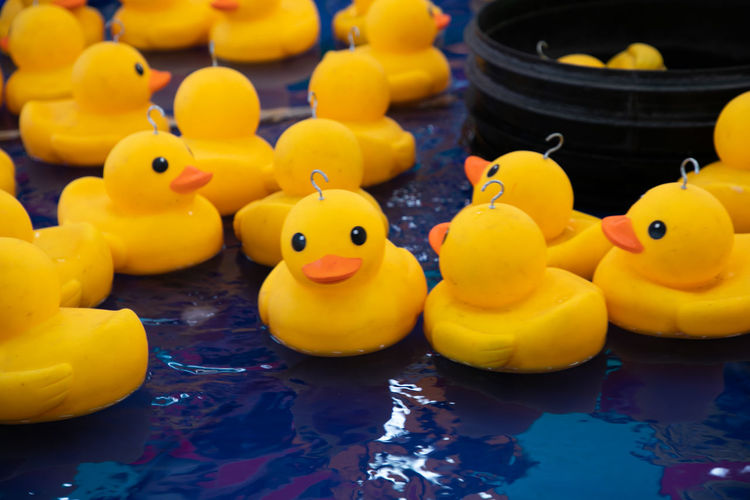 Close-up of yellow rubber ducks floating on water