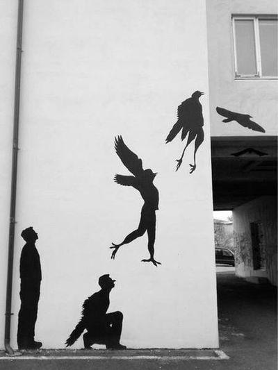 Black & White Freedom Flying High Transformation