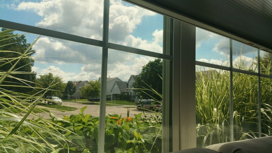 Window View Relaxing Taking Photos August Clear Skies Skyview From Window Looking Out The Window August 2016 Naperville Illinois Nature Photography Clouds And Sky White Clouds And Blue Sky Suburban Landscape Suburbs Home Is Where The Art Is