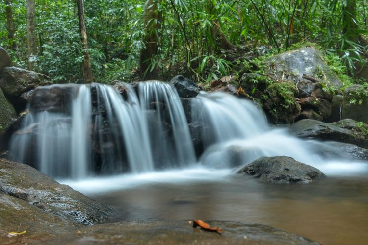waterfall Waterfall Water Nature Forest Scenics Environment Tree Motion Long Exposure Beauty In Nature Outdoors Travel Destinations Freshness Beauty