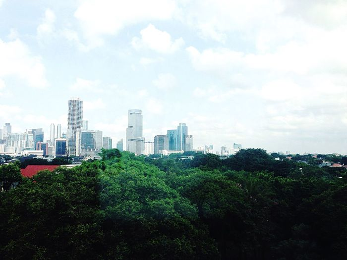 From where I stand Buildings Cityscapes City Clear Sky Green Forest