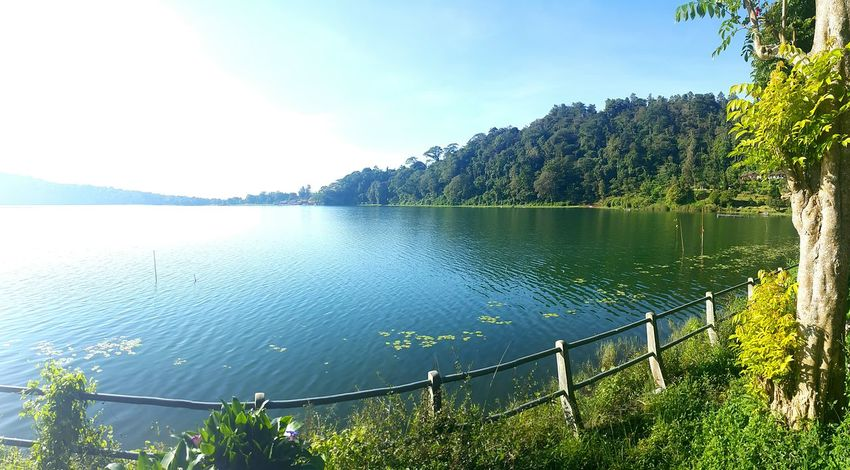 Baratan lake Forest Jungle Livingthedream Agushariantophotography Nature Green Swim