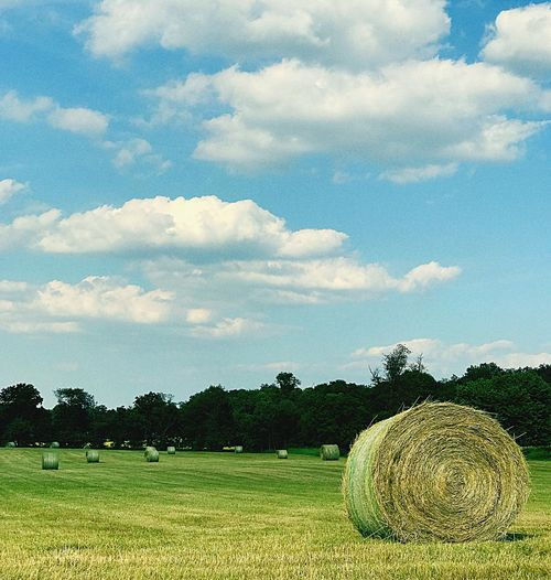 All Rolled Up IPhoneography Rolled Up Bale  Agriculture Hay Bale Tranquility Cloud - Sky Beauty In Nature Tranquil Scene Hay Scenics No People Day Landscape Outdoors Grass Rural Scene