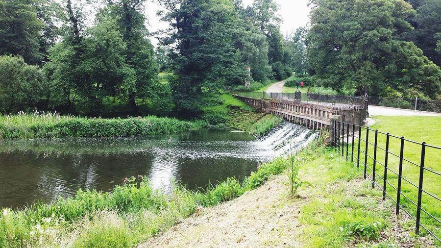 Lough Rynn, Water Lough Rynn