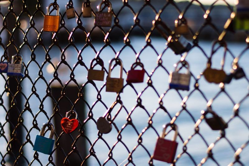 Locked Together Until Rust Tear Us Apart Deceptively Simple Bokeh Blur Pier Taking Photos Check This Out Walking Around Taking Pictures Enjoying The Sights Bay Area Street Photography Streetphotography Lock Locks Heart Better Together Togetherness Sea Seaside Fence