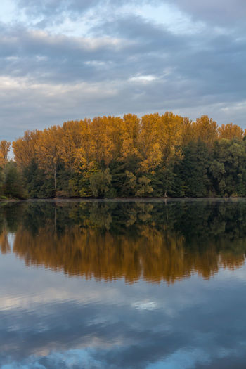 Autumn Beauty In Nature Cloud - Sky Day Forest Growth Lake Nature No People Outdoors Reflection Scenics Sky Tranquil Scene Tranquility Tree Water Waterfront
