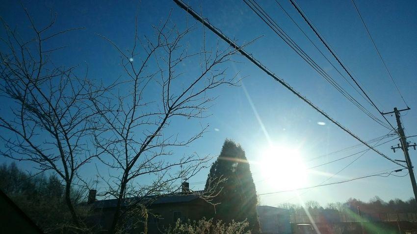 なおphoto キラキラ 高校の裏