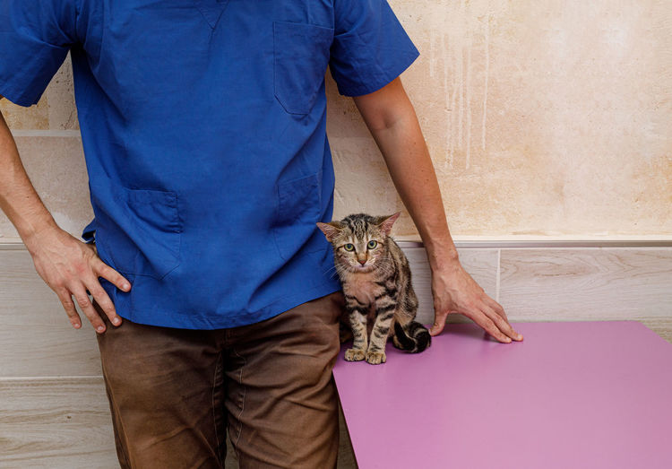 Midsection of man holding cat standing against wall