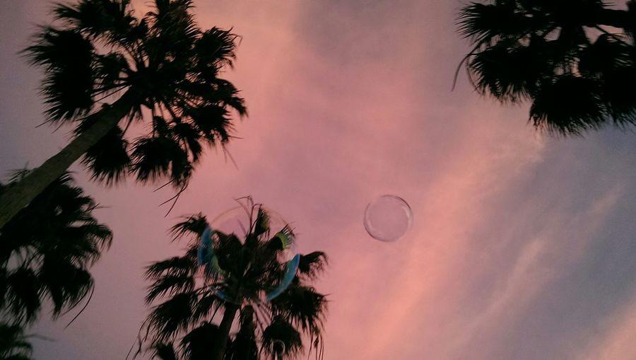 Skyporn Soap Bubbles Corralejo Fuerteventura