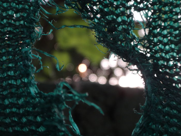 Close-up of torn net outdoors