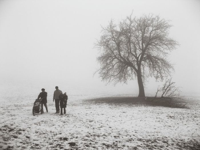Walking home Winter Fog Tree People Outdoors Snow Cold Temperature Togetherness Nature Walking In The Snow❄⛄ EyeEmNewHere Let's Go. Together.