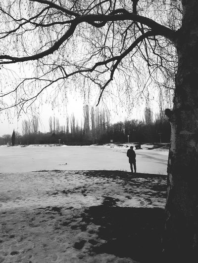 Winter One Person Snow Ice Beauty In Nature Winter Lonely Loneliness Lonelyplanet Black And White Black & White Trees Man Blackandwhite Photography Blackandwhite One Man Only Man Walking Man Standing Cold Weather Ice Melting Travelling Travel Snow Background Iceland_collection Lake View