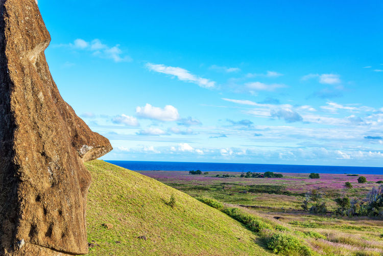 Moais statue looking over sea