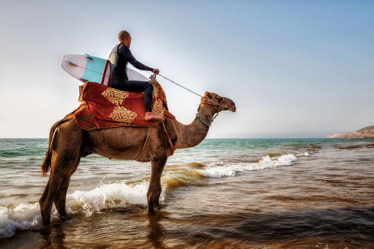 Man riding horse at beach against sky