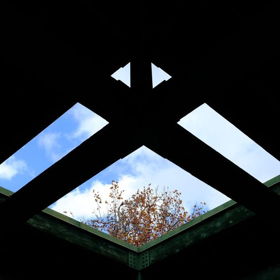 X Sky No People Outdoors Architecture Close-up Day Light And Shadow Eyemphotography Straightfromcamera Available Light Full Length Built Structure Backgrounds Fujifilm_xseries Heart Shape Beauty In Nature Low Angle View The Way Forward Lowkeyphotography Architecture Sunlight Branch Blue Skies Blue Sky White Clouds Growth