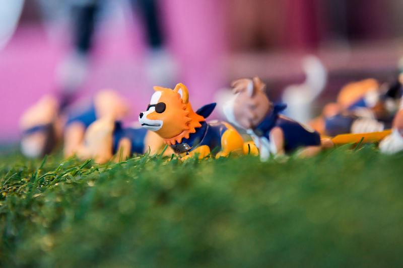 Close-up of toy on field