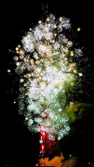 Night Arts Culture And Entertainment Illuminated No People Multi Colored Close-up Outdoors Firework Display Fireworks Photography Fireworks Fireworks Festival Night Photography Night Lights Celebration Event Celebration Stranraer Night Light Photography Night Light Show Bright Light In A Dark World Beautiful Lights Pyrotechnics Pyrotechnic Effect Firework - Man Made Object Fireworks! November 5th
