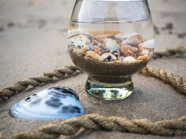 Animal Themes Close-up Day Drink Drinking Glass Fishbowl Food And Drink Freshness Healthy Eating Indoors  Nature No People Pebble Table Water