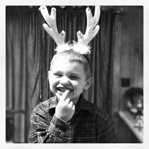 ?HIM!! Arlie is ready for Christmas He's got his Antlers on! ??