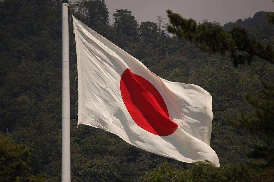 日本がんばれ🇯🇵サッカー初戦負けちゃったけど✨がんばれ🇯🇵 日本 オリンピック 応援 暑い日が続きますが、オリンピックの見過ぎで寝不足にならないように…とは言っても、私はそれほどオリンピックを見ることはないと思う、夜は寝るタイプ、眠くなるタイプ、すぐに寝ちゃうから…朝は早い、もう老年生活?朝はありすと共に起き、散歩を済ませた後ですらまだ6時前…だから10時には…でも日本がんばれ、それだけは思う、日本人として。いや、見れないのではない…負けるのを見るのが嫌いなだけかもしれない💦 出雲大社 日本一大きな 国旗 日本放送協会の朝の放送の最初に出る国旗。