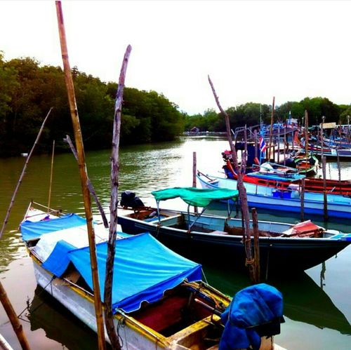 Water Beauty In Nature Nature boatView Nature Connection Market Stall Gondola - Traditional Boat River Home Backgrounds Repair Shop Night Texi Ships⚓️⛵️🚢 Tree Boats⛵️ History Market City Real People Still Life