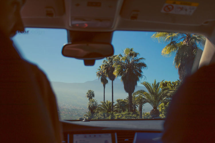Adventure Selective Focus Outdoors Motor Vehicle Tropical Climate Land Vehicle Growth Window Beauty In Nature Lifestyles Glass - Material Real People Car One Person Sky Transparent Mode Of Transportation Nature Tree Vehicle Interior Plant My Best Photo