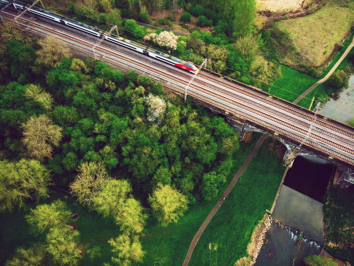 High angle view of railway amidst trees in the country