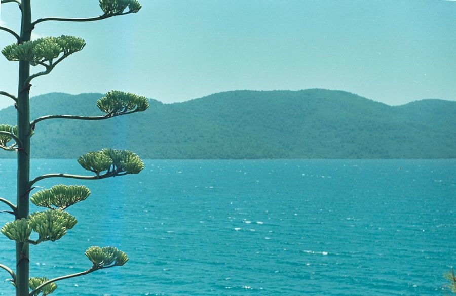 Analog Camera Zenit Et Analog Photography Analog Film Filmisnotdead Sea Nature Beautiful Scenery Muğla Akyaka